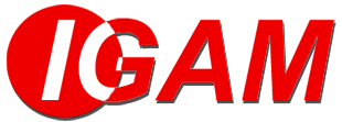 IGAM - Occasion en Renault Specialist